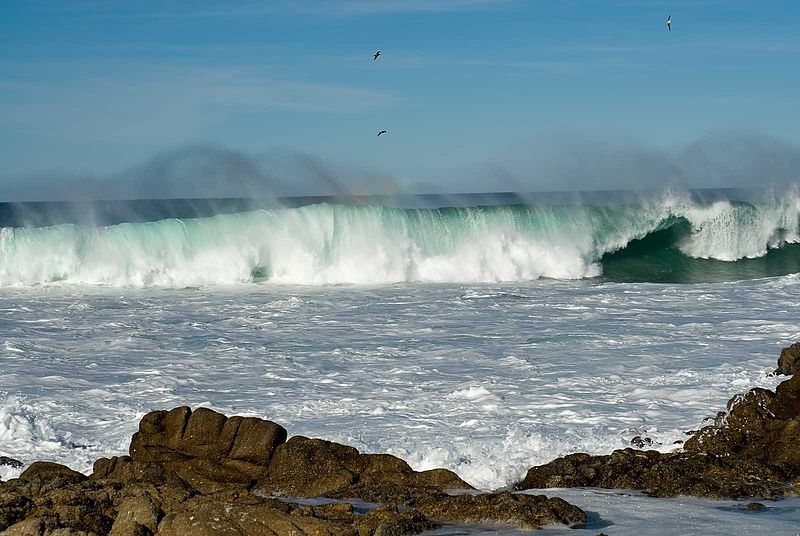 Waves ocean